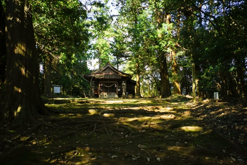 日本遺産 人吉球磨 雨宮神社 トトロの森_c0338787_16180425.jpg
