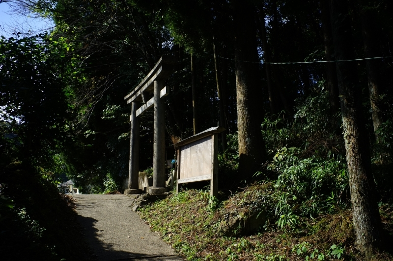 日本遺産 人吉球磨 雨宮神社 トトロの森_c0338787_16180712.jpg