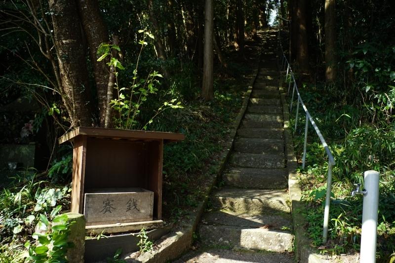 日本遺産 人吉球磨 雨宮神社 トトロの森_c0338787_16181721.jpg