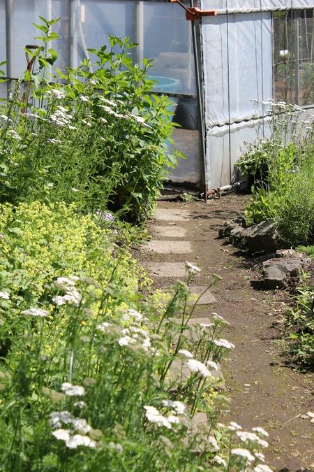 新しくお庭を作る方へ_a0292194_12512571.jpg