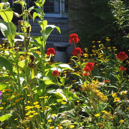 新しくお庭を作る方へ_a0292194_1254655.jpg