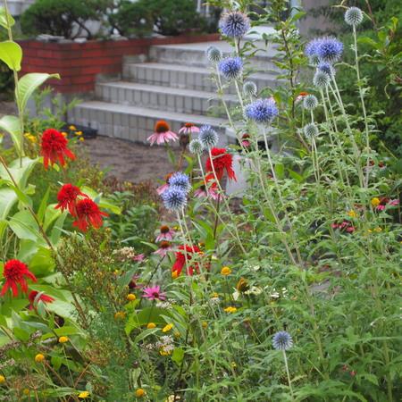 新しくお庭を作る方へ_a0292194_12561533.jpg