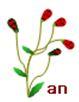 f0137096_10514144.jpg