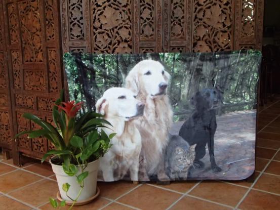 f0064906_1833989.jpg