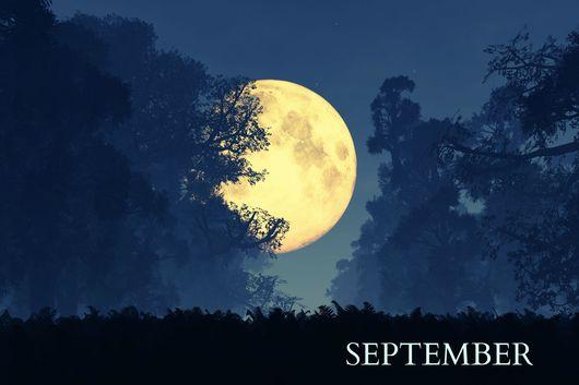 9月クラススケジュール_a0194313_10563097.jpg