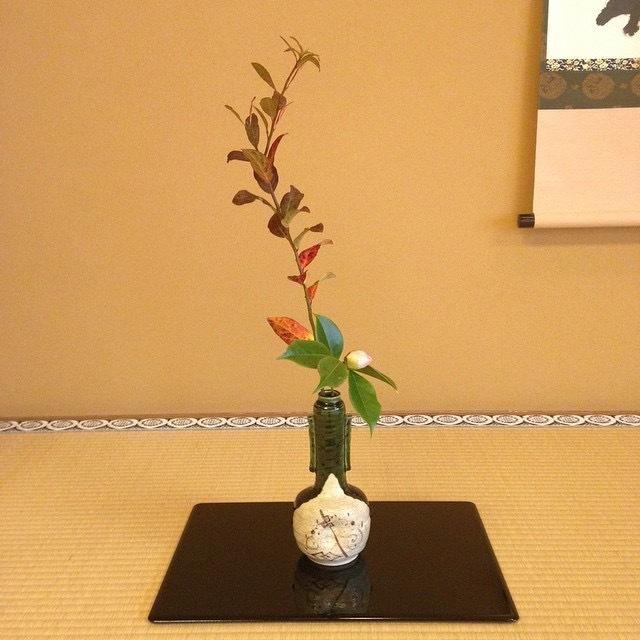 Zen style flower arrangement for tearoom - chabana_d0334837_15555708.jpg