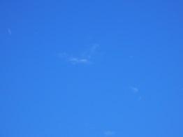 晴天のシルバーウィーク_e0175370_1784196.jpg