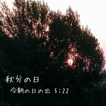 c0028304_192792.jpg