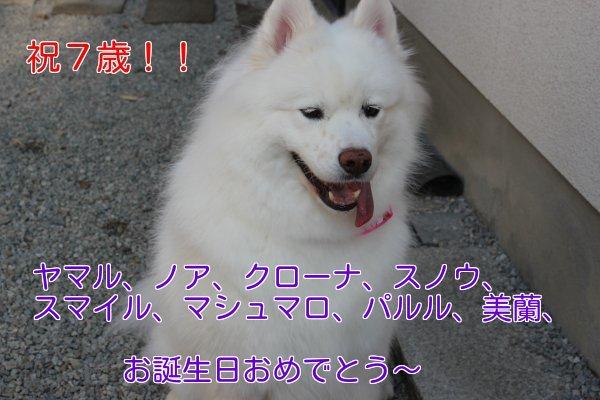 b0073110_14435780.jpg
