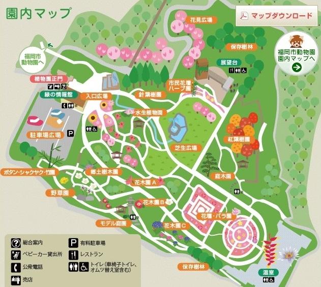 不思議の森 in 博多_a0315918_17100917.jpg