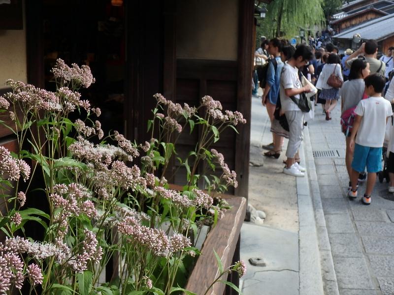 SWど真ん中の京都にて_c0113733_21113113.jpg