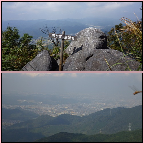 下見登山・・平尾台、塔ヶ峯コース_e0164643_15284393.jpg