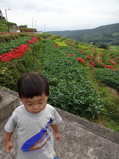 SW3日目 棚田・湖・滝・ワイン工場_e0298288_23363099.jpg