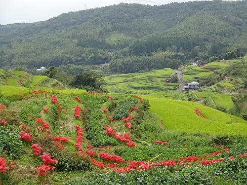 SW3日目 棚田・湖・滝・ワイン工場_e0298288_23363314.jpg