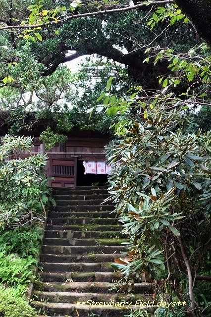 鎌倉 浄光明寺_c0087094_21141716.jpg