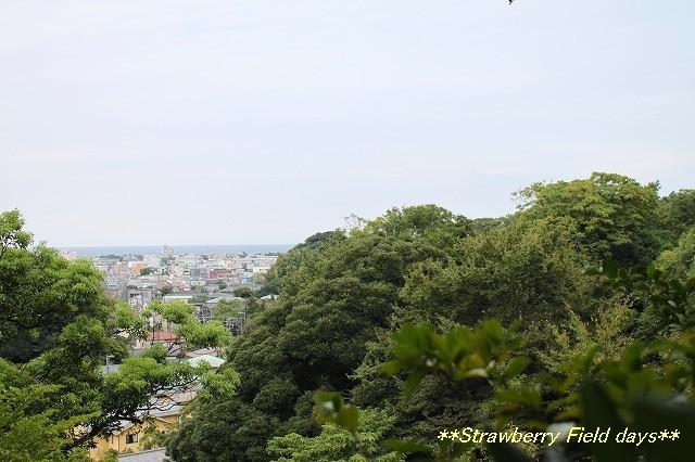 鎌倉 浄光明寺_c0087094_21151436.jpg