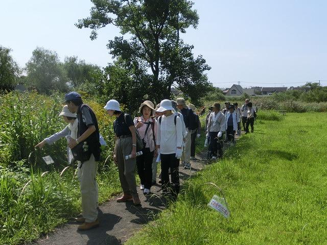 暑い中250人以上の皆さんに参加いただいた「のんびり 彼岸花ウォーク」_f0141310_7291980.jpg