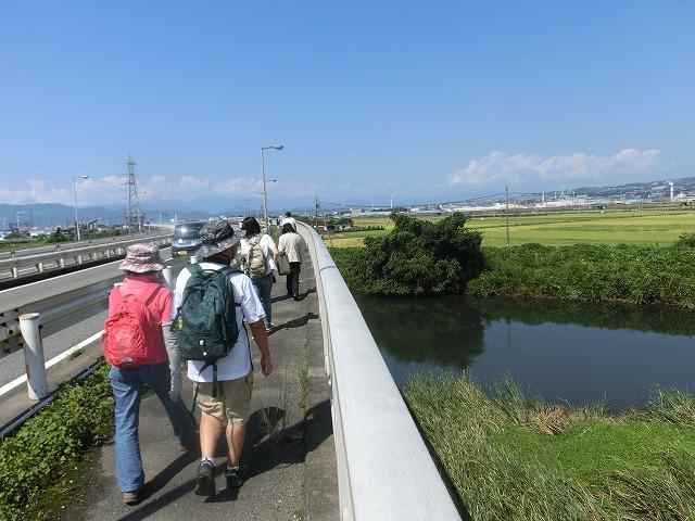 暑い中250人以上の皆さんに参加いただいた「のんびり 彼岸花ウォーク」_f0141310_7295832.jpg