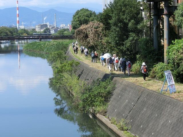 暑い中250人以上の皆さんに参加いただいた「のんびり 彼岸花ウォーク」_f0141310_731341.jpg