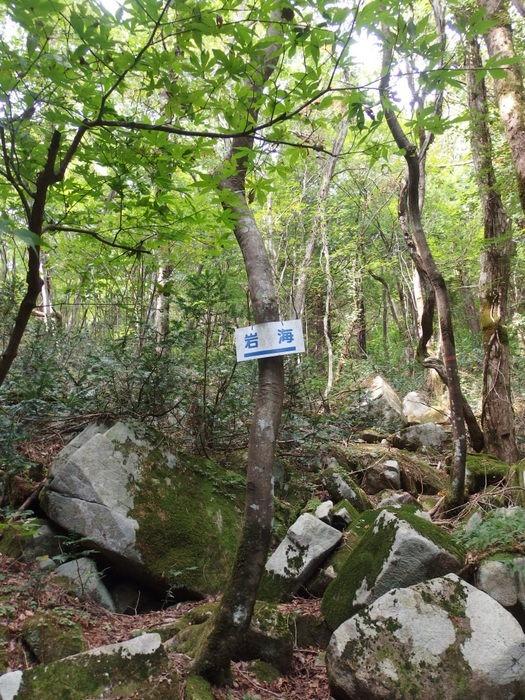 犬伏山登山_c0116915_0333989.jpg