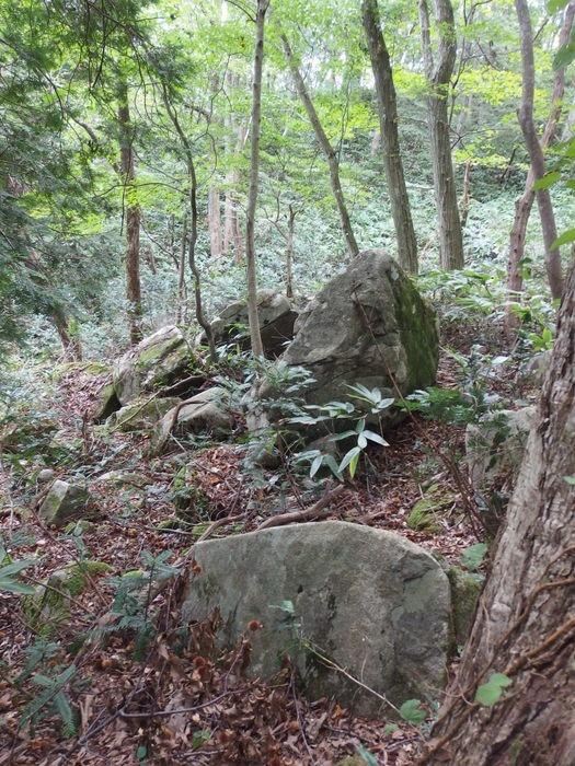 犬伏山登山_c0116915_0354877.jpg