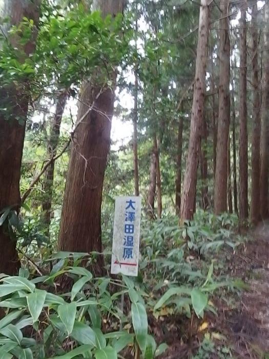 犬伏山登山_c0116915_0464720.jpg