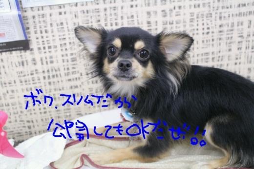 秋_b0130018_23151560.jpg