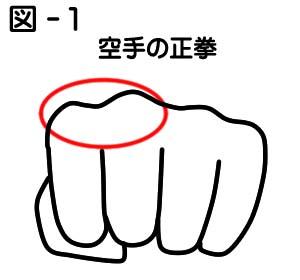 拳の握り方 : 実戦カラテ 大阪拳...
