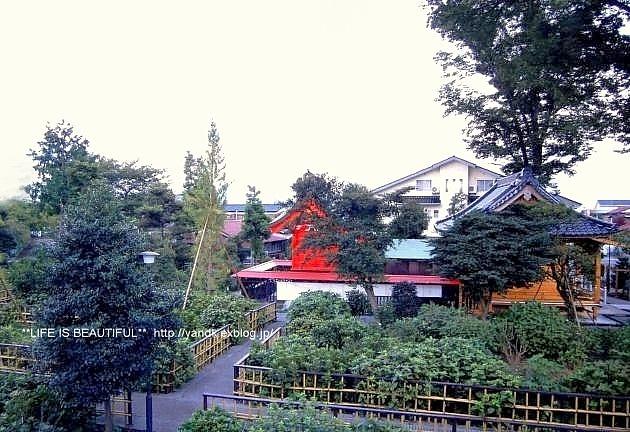 ステキなおうち_d0083623_22334121.jpg