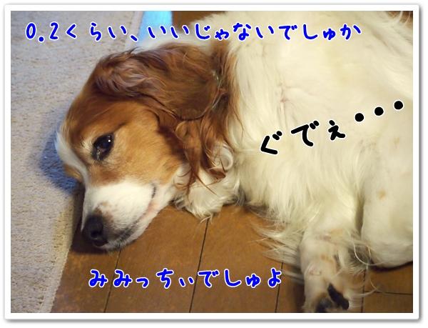 d0013149_19441054.jpg