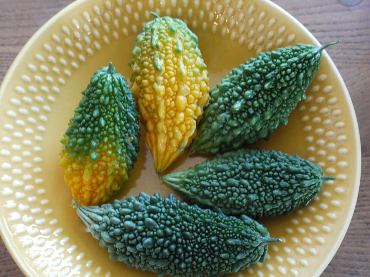 今年最後のゴーヤの収穫とローズ腹のウーラちゃん_e0356356_09475036.jpg
