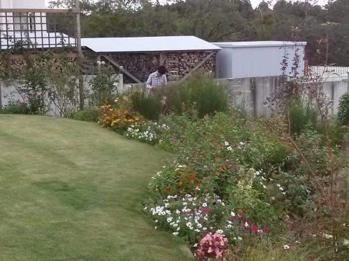 秋の庭_f0228967_10261438.jpg