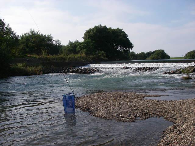 2015、オイカワ釣りの5とスゴモロ釣りの1_a0074069_16011146.jpg