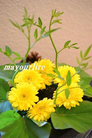 9月 テーブルコーディネート マユールライラ 海吉教室_d0169179_2230432.jpg