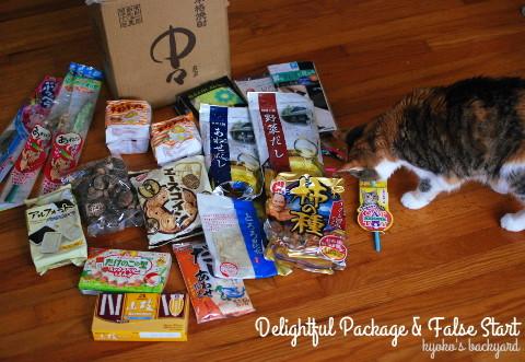 嬉しい小包と、フライングする猫_b0253205_23490572.jpg