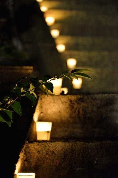名勝和歌の浦 観月会 竹燈夜IN妹背山 準備_c0367107_18341230.jpg