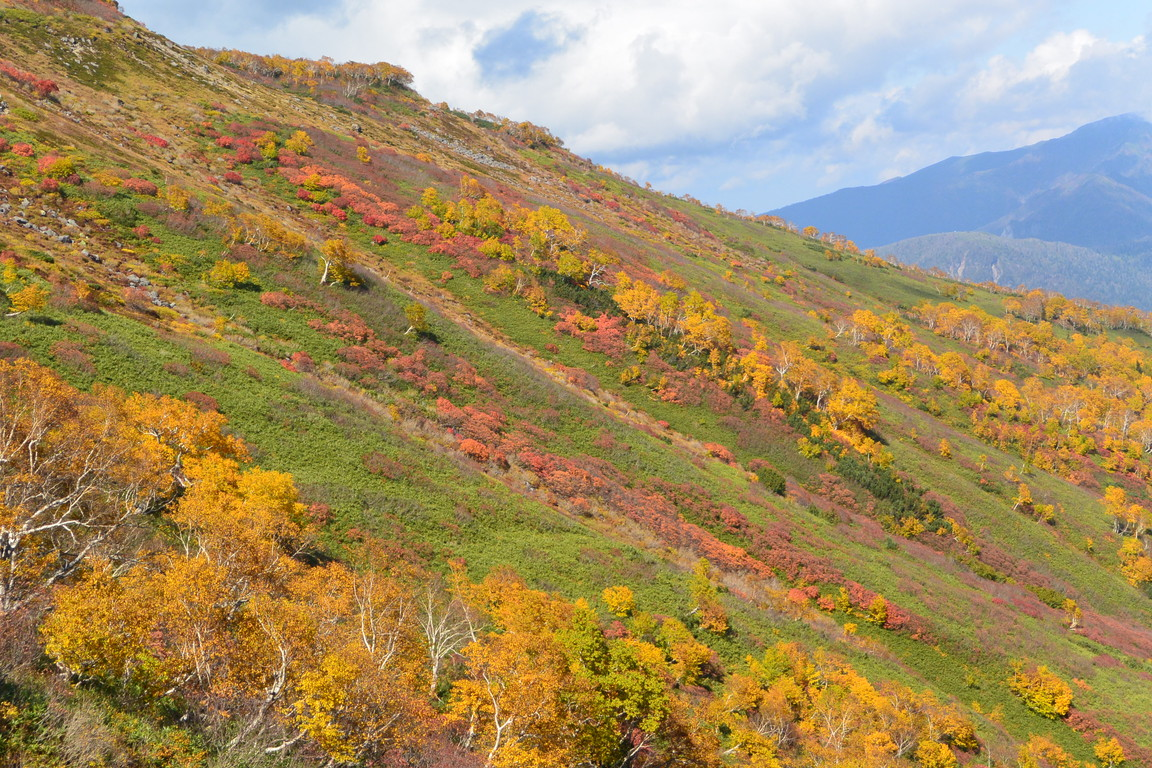 "2015年9月『錦織りなす大雪山』  September 2015 ""Autumn Colour in Taisetsu Mountains\"" _c0219616_73499.jpg"