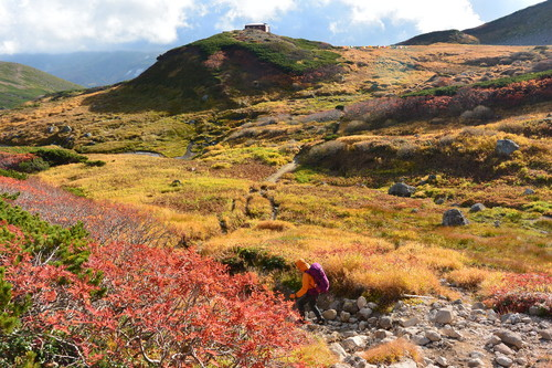 "2015年9月『錦織りなす大雪山』  September 2015 ""Autumn Colour in Taisetsu Mountains\"" _c0219616_7362733.jpg"