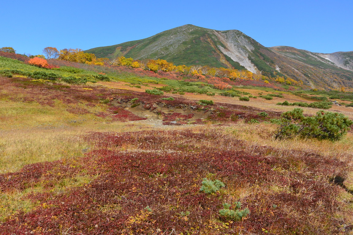 "2015年9月『錦織りなす大雪山』  September 2015 ""Autumn Colour in Taisetsu Mountains\"" _c0219616_7493923.jpg"