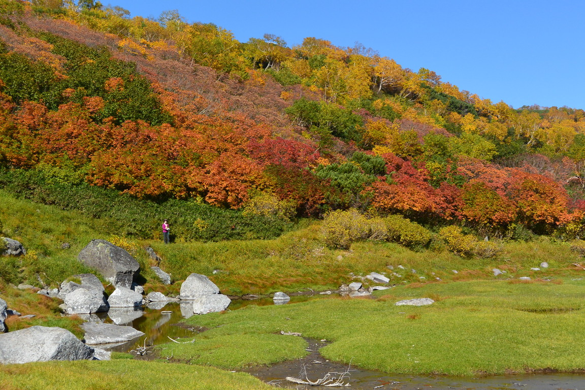 "2015年9月『錦織りなす大雪山』  September 2015 ""Autumn Colour in Taisetsu Mountains\"" _c0219616_7545334.jpg"