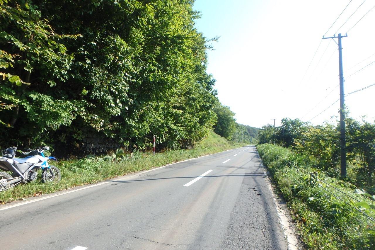 【チャレンジ】やっぱ林道は楽しいねツーリング_e0159646_6104723.jpg