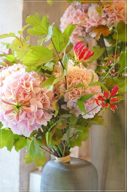 Rosebudのさくら色の紫陽花_f0151946_1174781.jpg