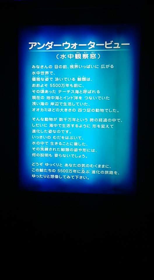 b0143976_1128999.jpg