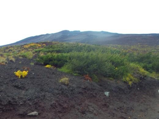 9月16日 富士山・宝永山火口の下見_e0145782_556110.jpg