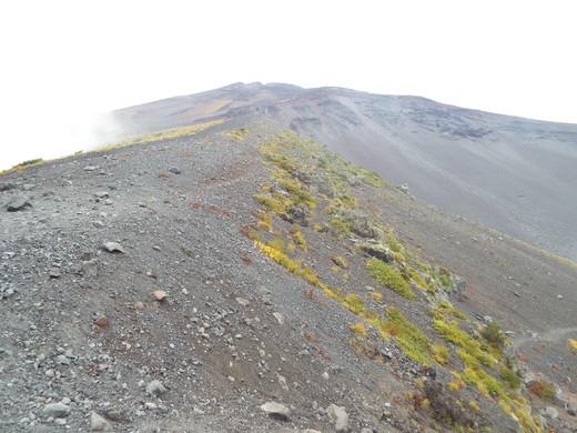 9月16日 富士山・宝永山火口の下見_e0145782_642327.jpg