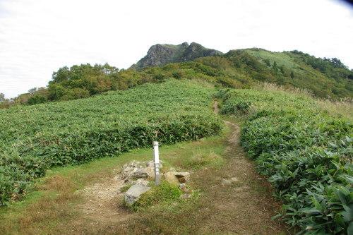 No1:四国寒風山へ日帰り登山しました。_d0341514_15221501.jpg