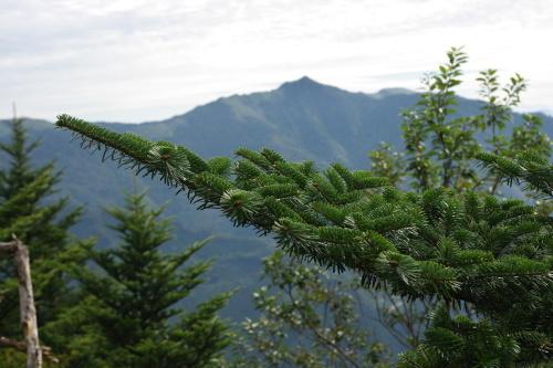 No1:四国寒風山へ日帰り登山しました。_d0341514_15281433.jpg