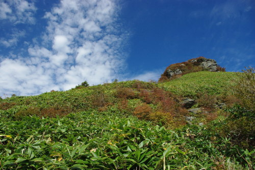 No1:四国寒風山へ日帰り登山しました。_d0341514_15380982.jpg