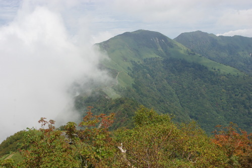 No1:四国寒風山へ日帰り登山しました。_d0341514_15421151.jpg