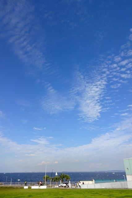 *横須賀*「アクアマーレ」_f0348831_08562342.jpg